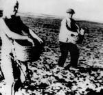 Сев в колхозе, 1942 г.